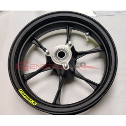 Cerchio anteriore completo GP-2