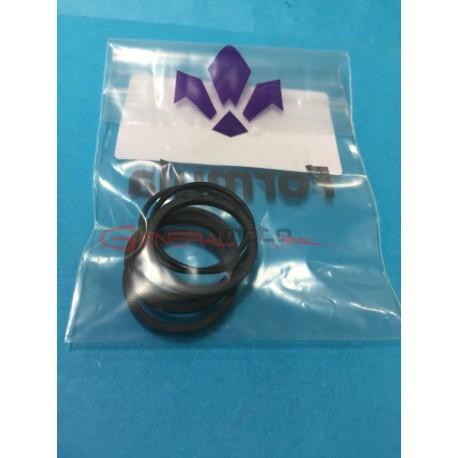 Kit o-ring pinza freno anteriore