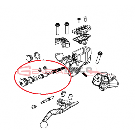 Kit pistone dx pompa freno anteriore